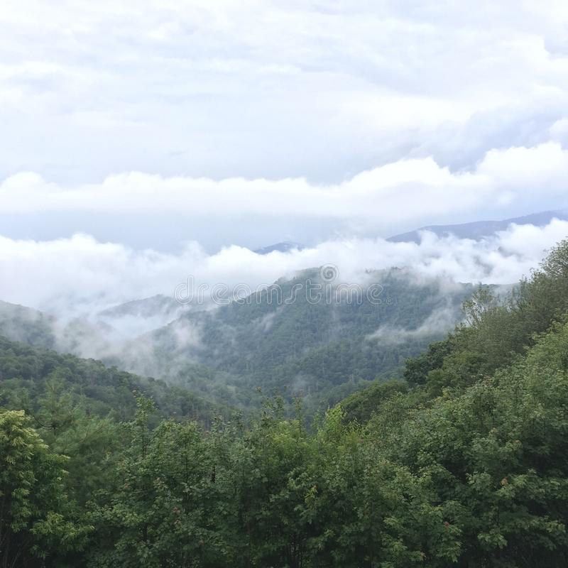 Dans les collines gracieuses photo stock