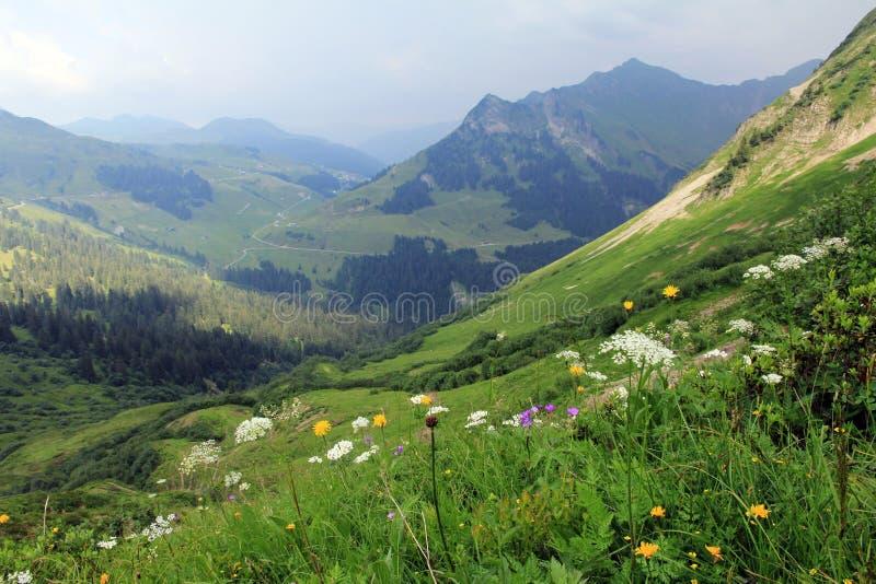 Dans les montagnes de l'Autriche photos libres de droits
