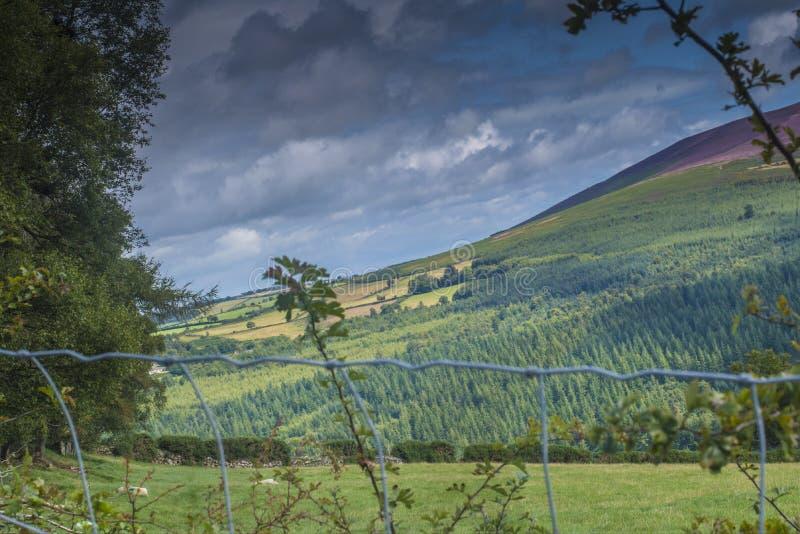 Dans les montagnes de Wicklow photographie stock libre de droits