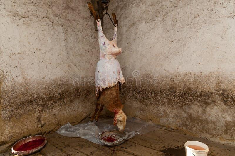 Dans les villages tués un mouton images stock