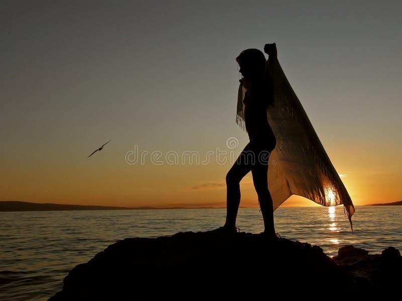 Dans met sjaal en vogel 1 stock afbeeldingen