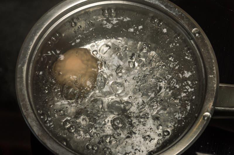Dans un oeuf de poulet de cuisinier de casserole en eau bouillante images libres de droits