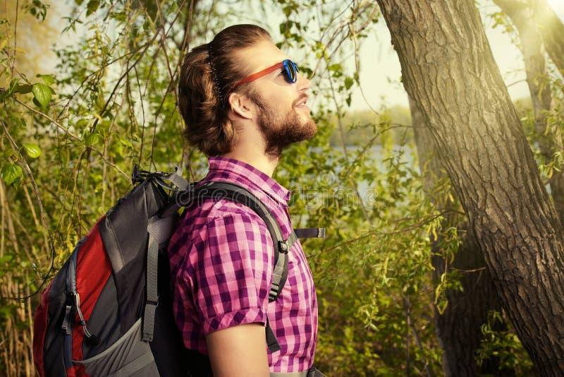 Dans une forêt photo libre de droits