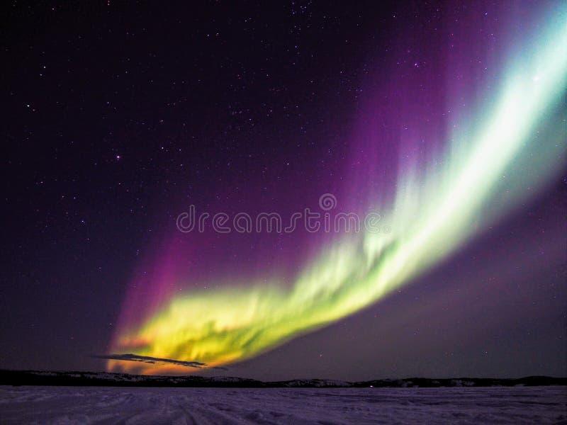 Dansa nordliga ljus och stjärnor över den djupfrysta sjön arkivfoto