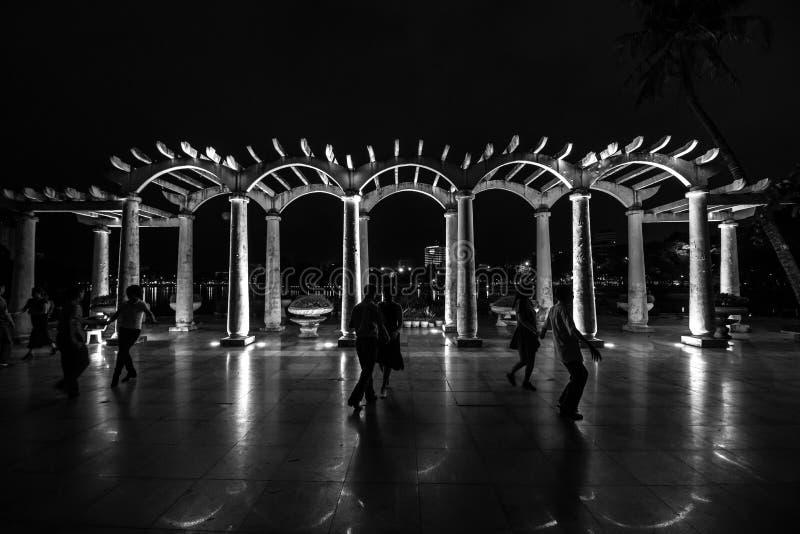 Dansa på natten arkivbild