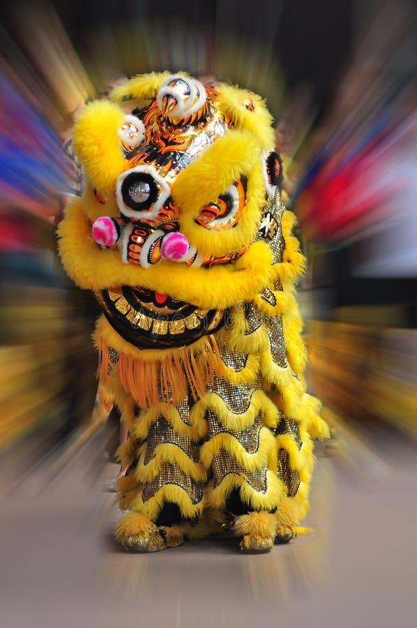 Danse chinoise de lion image stock