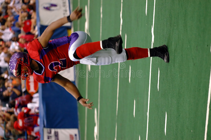 Danse d'atterrissage du football photo libre de droits