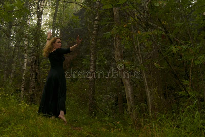 Danse dans la forêt images libres de droits