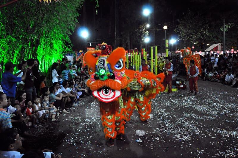 Danse de dragon pendant année lunaire de Tet la nouvelle au Vietnam image stock