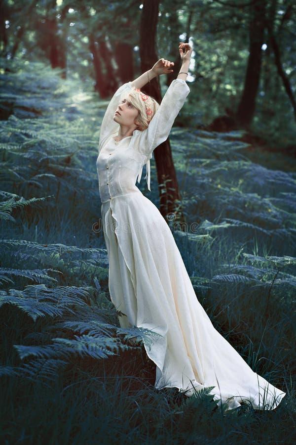 Danse de femme de conte de fées dans la forêt images libres de droits