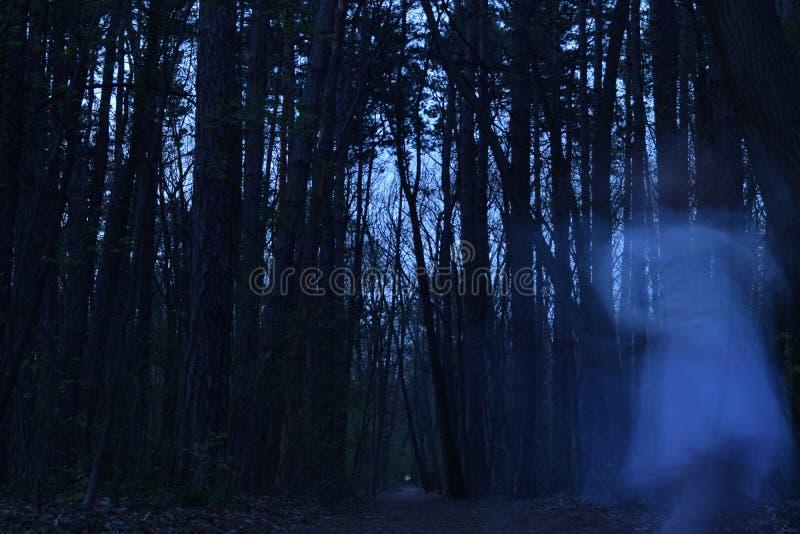 Danse de Ghost une danse hantée dans la forêt photo stock