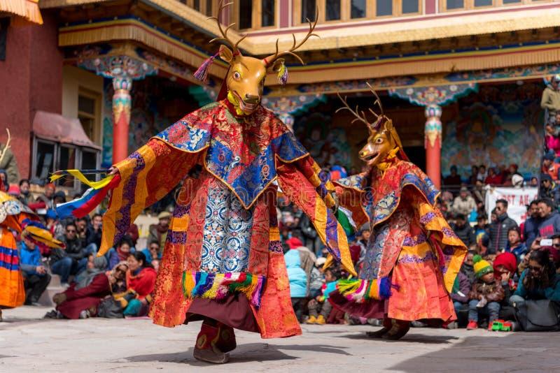 Danse de moine bouddhiste au festival de masque photographie stock libre de droits