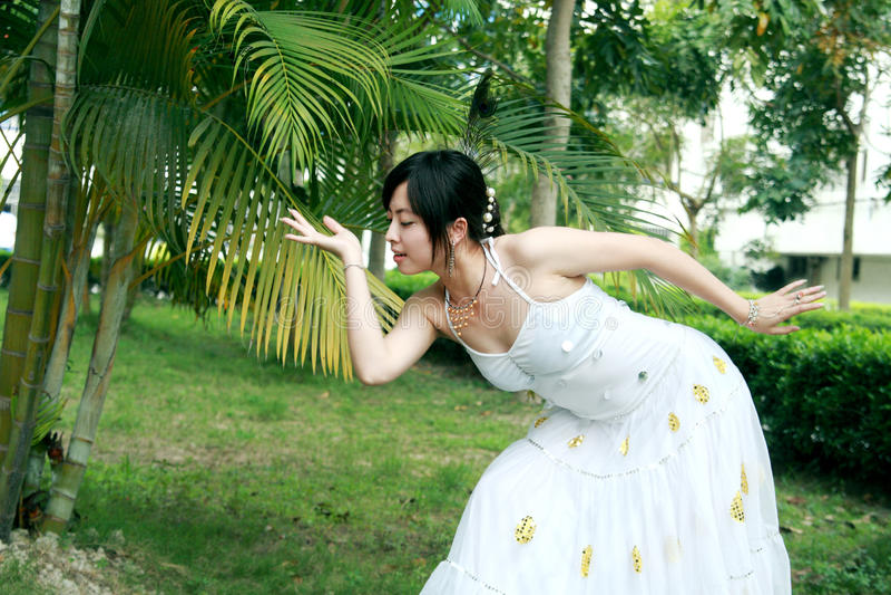 Danse de paon photos libres de droits