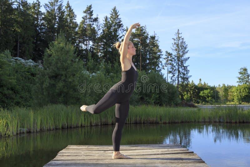 Danse sur une poire photographie stock libre de droits