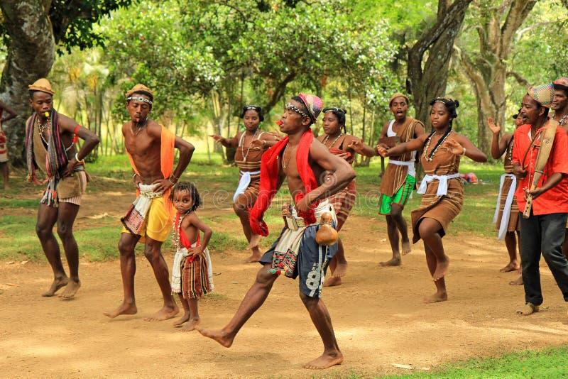 Danse traditionnelle au Madagascar, Afrique image stock