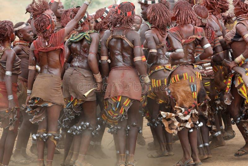 Dansende Hamer-vrouwen in Lagere Omo-Vallei, Ethiopië royalty-vrije stock foto