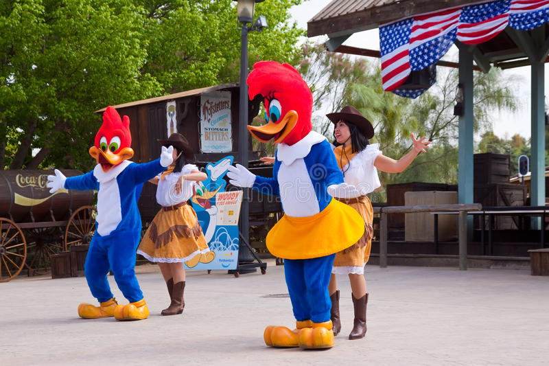 Download Dansers With Woody Performaning At Theme Park Editorial Photo - Image of america, dance: 19647856