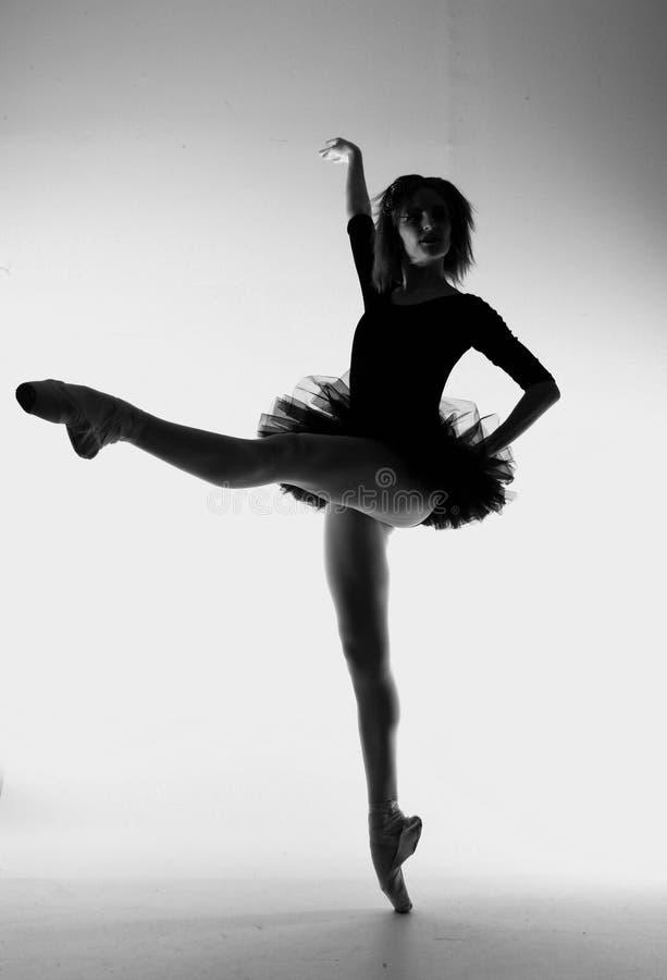 Danseur classique élégant With Artistic Lighting images stock