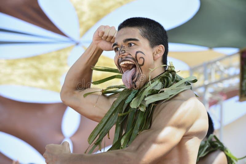 Danseur maori image libre de droits