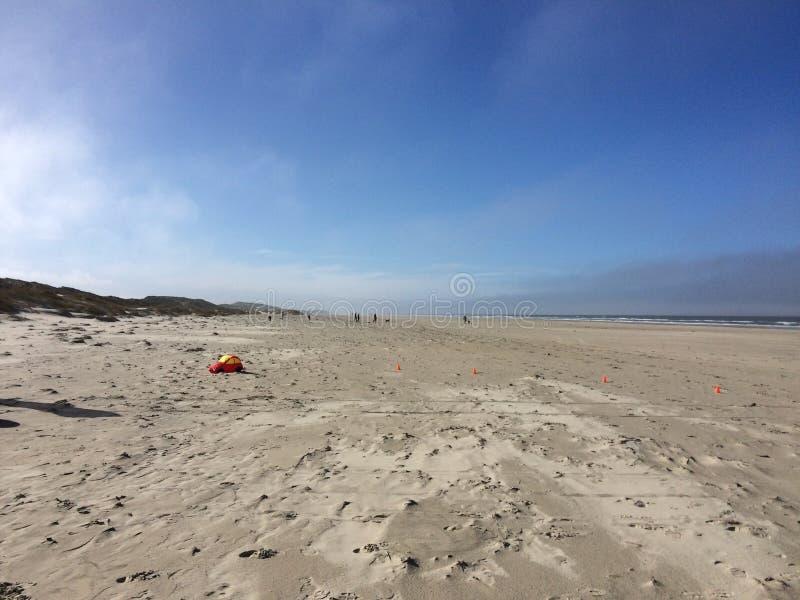 Dansk strand royaltyfri bild
