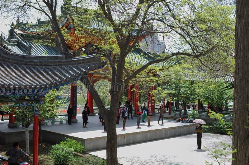 Dansles in een Chinees park stock foto's