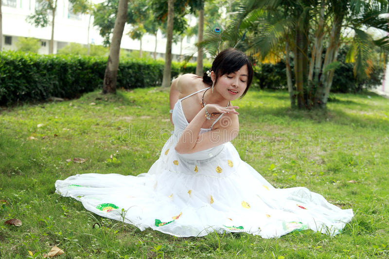 danspåfågel royaltyfri fotografi