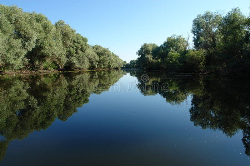 Danube delta. Landscape with tree and wather stock image