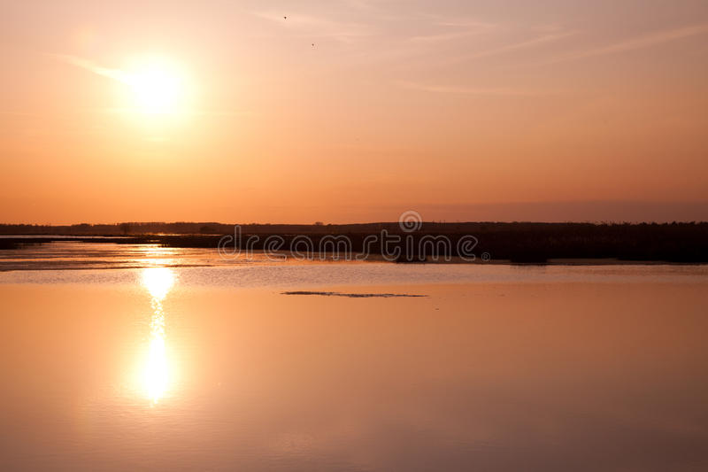 Download Danube Delta stock photo. Image of scenery, sunlight - 14591554