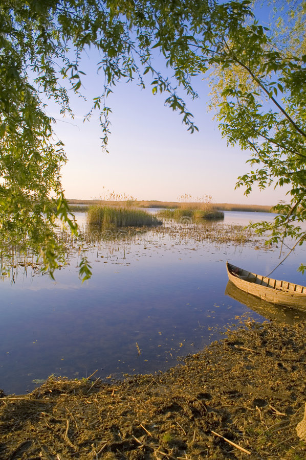 Danube delta. View, a boat the only escape royalty free stock photography