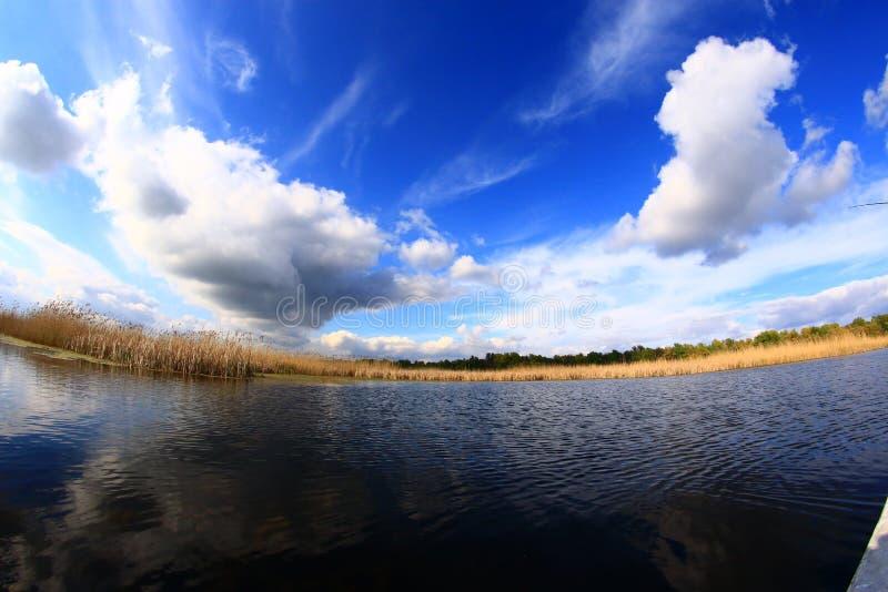 Danube delta. Landscape from the Danube delta royalty free stock photos