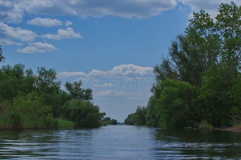 Danube Delta landscape royalty free stock image