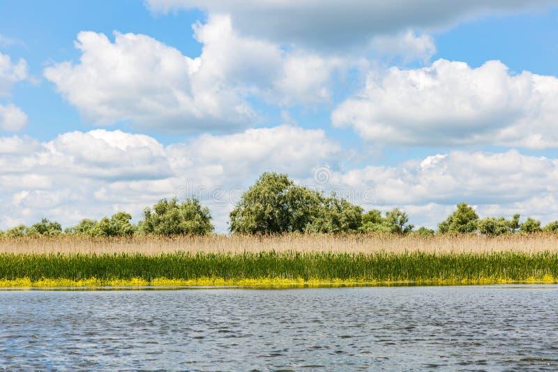 Danube Delta landscape. Landscape photo of Danube Delta in Romania stock images