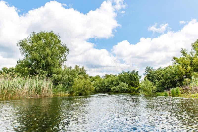 Danube Delta landscape. Landscape photo of Danube Delta in Romania royalty free stock photos
