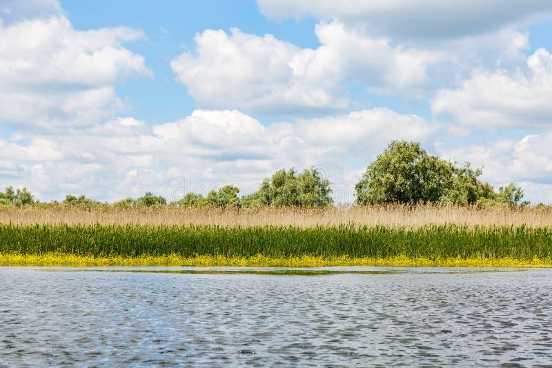 Danube Delta landscape. Landscape photo of Danube Delta in Romania royalty free stock image