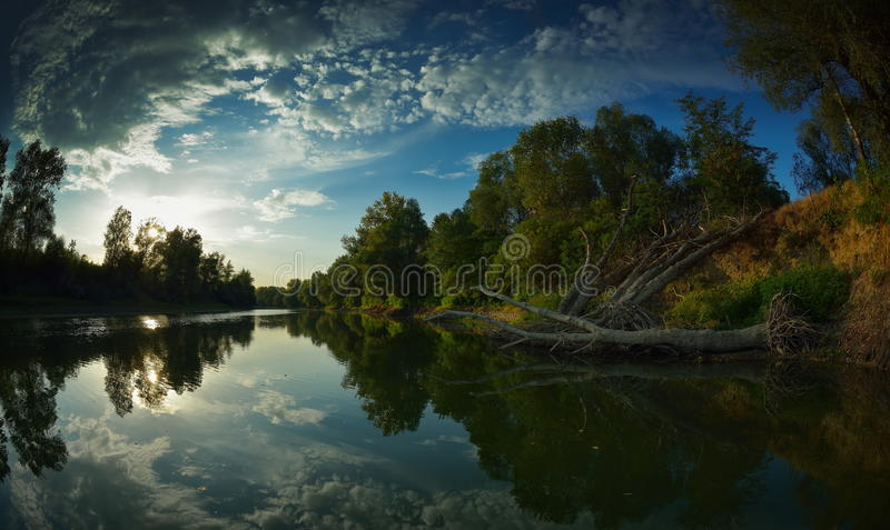 Danube delta landscape. In summer royalty free stock photo