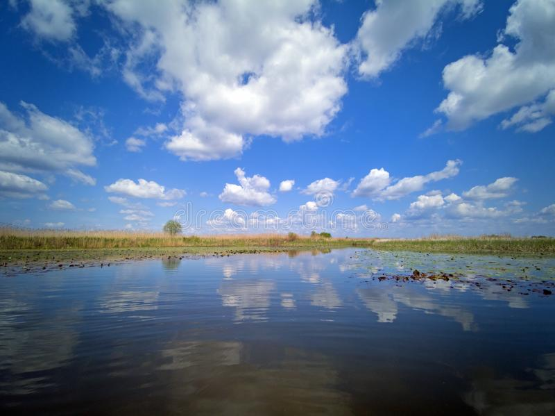 Danube Delta landscape water lilies and reeds stock photos