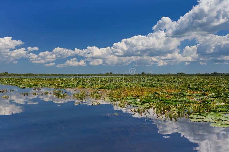 Danube Delta, Romania stock photos