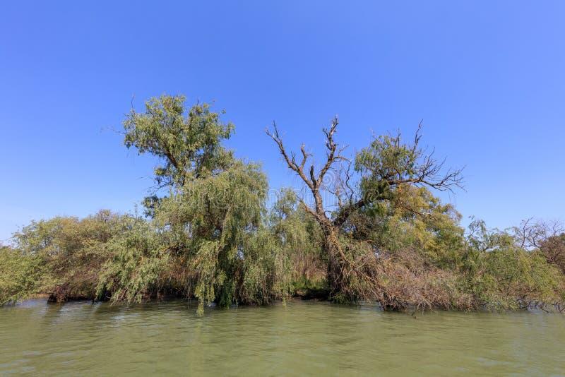 Danube Delta, Romania. Landscape in the Danube Delta, Romania, Europe stock images