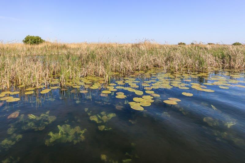 Danube Delta, Romania. Landscape in the Danube Delta, Romania, Europe stock photography