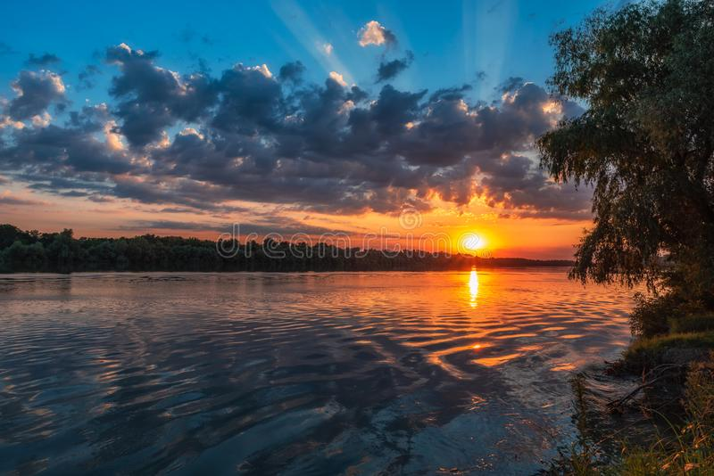 Danube Delta Vegetation and wildlife Sunrise stock images