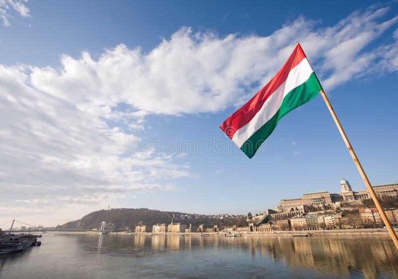 danube flaggaungrare över floden arkivfoton