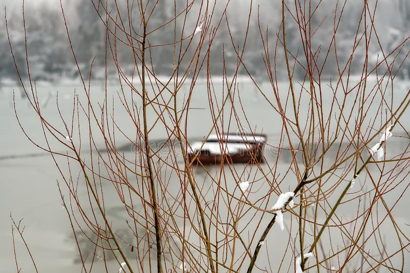 Danube island Šodroš near Novi Sad, Serbia. Colorful landscape with snowy trees, beautiful frozen river. A boats covered with s stock photos