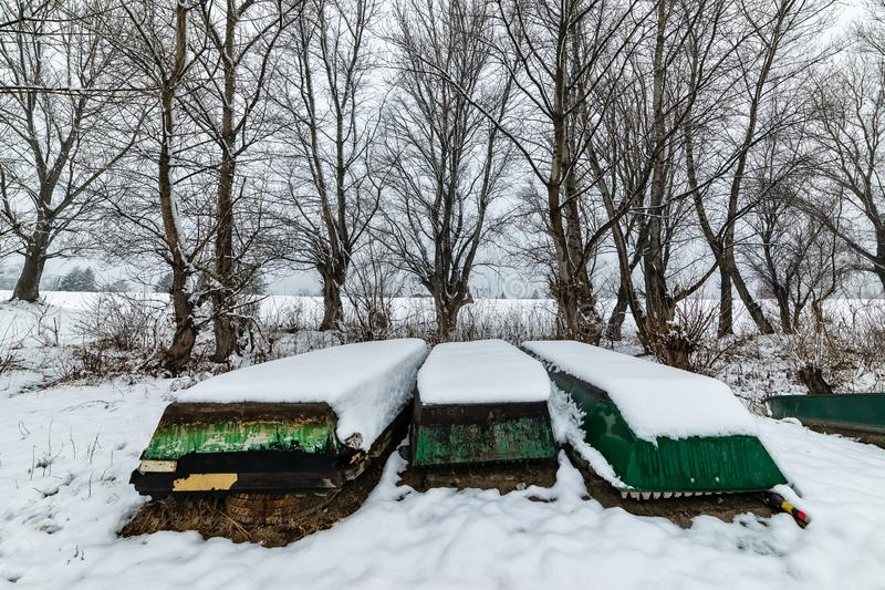 Danube island Šodroš near Novi Sad, Serbia. Colorful landscape with snowy trees, beautiful frozen river. A boats covered with sn. Ow or submerged stock photo