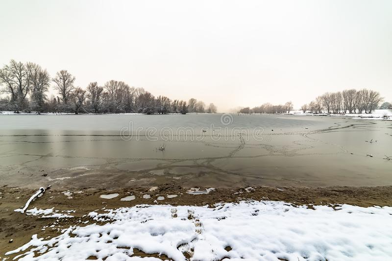 Danube island Šodroš near Novi Sad, Serbia. Colorful landscape with snowy trees, beautiful frozen river. royalty free stock image