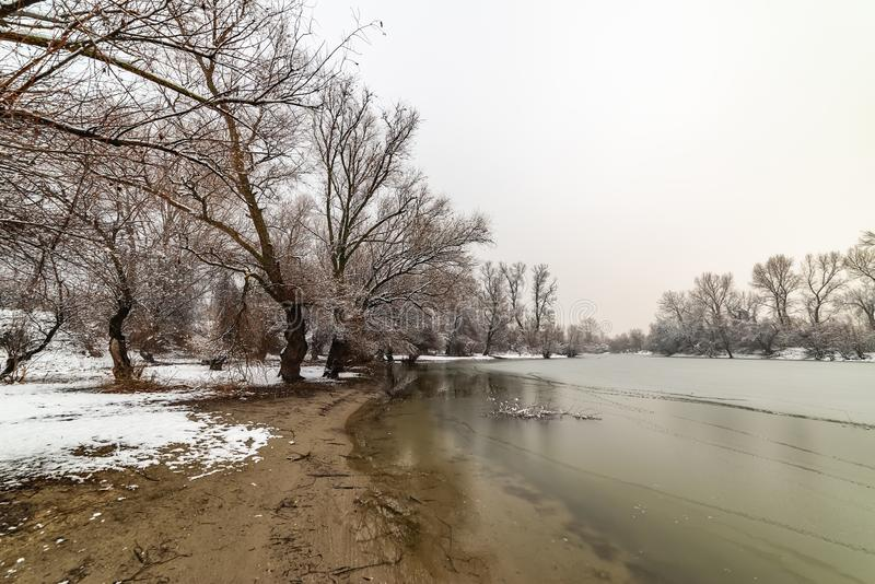 Danube island Šodroš near Novi Sad, Serbia. Colorful landscape with snowy trees, beautiful frozen river. royalty free stock photography