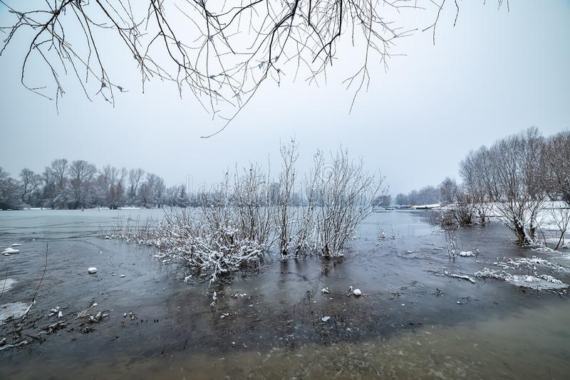 Danube island Šodroš near Novi Sad, Serbia. Colorful landscape with snowy trees, beautiful frozen river. royalty free stock photo