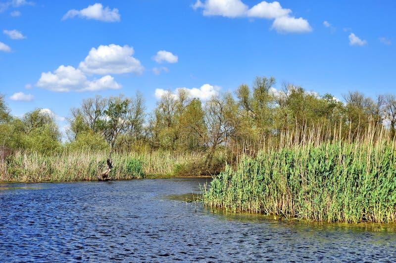 Danube Delta, Romania royalty free stock photos