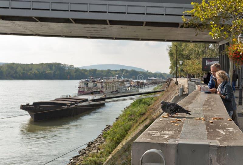Ship moored under the UFO Bridge in Bratislava, Slovakia. Danube riverbank, moored passenger ship under the SNP New bridge or UFO Bridge, tourists and feeding royalty free stock images