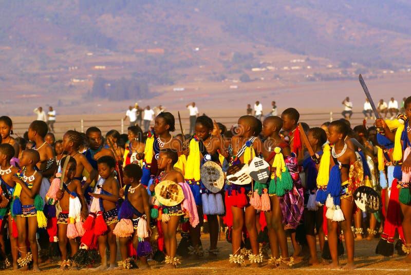 Danza de lámina en Swazilandia (África) imagen de archivo libre de regalías
