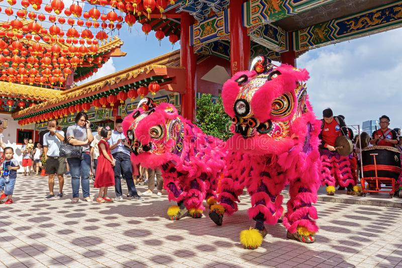 Danza de león durante la celebración china del Año Nuevo en el templo de Thean Hou imágenes de archivo libres de regalías